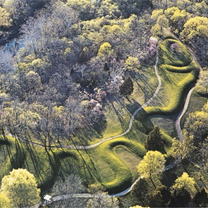 Cobras At the Serpent Mound